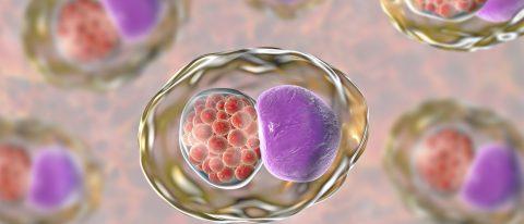 Infekcje intymne a zajście w ciążę